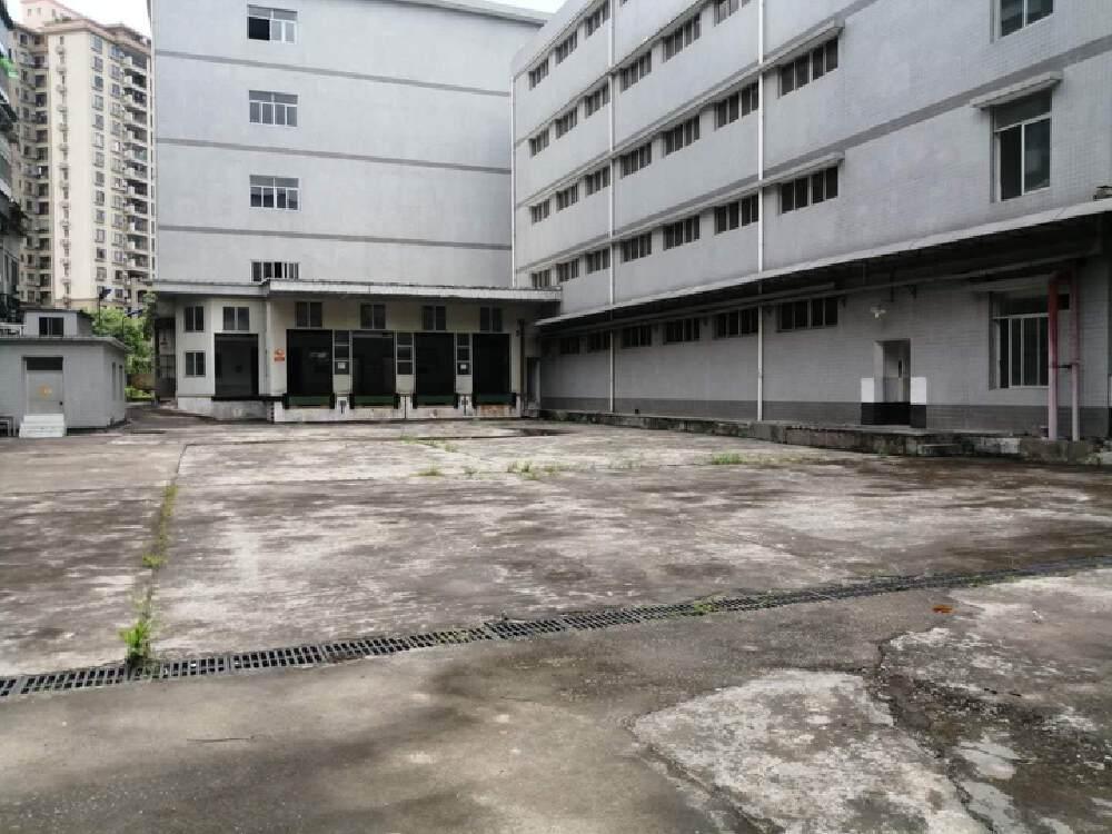 三元里工业区10000平方标准恒温仓库厂房可分租