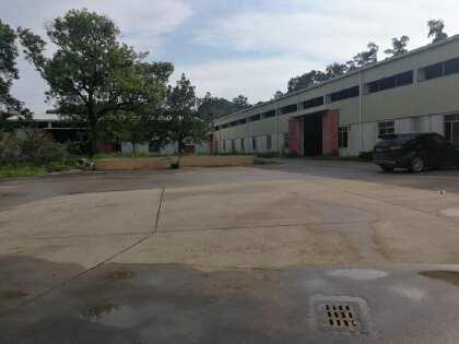 广州南沙超值投资自用电镀厂房出售占地22亩建筑11000