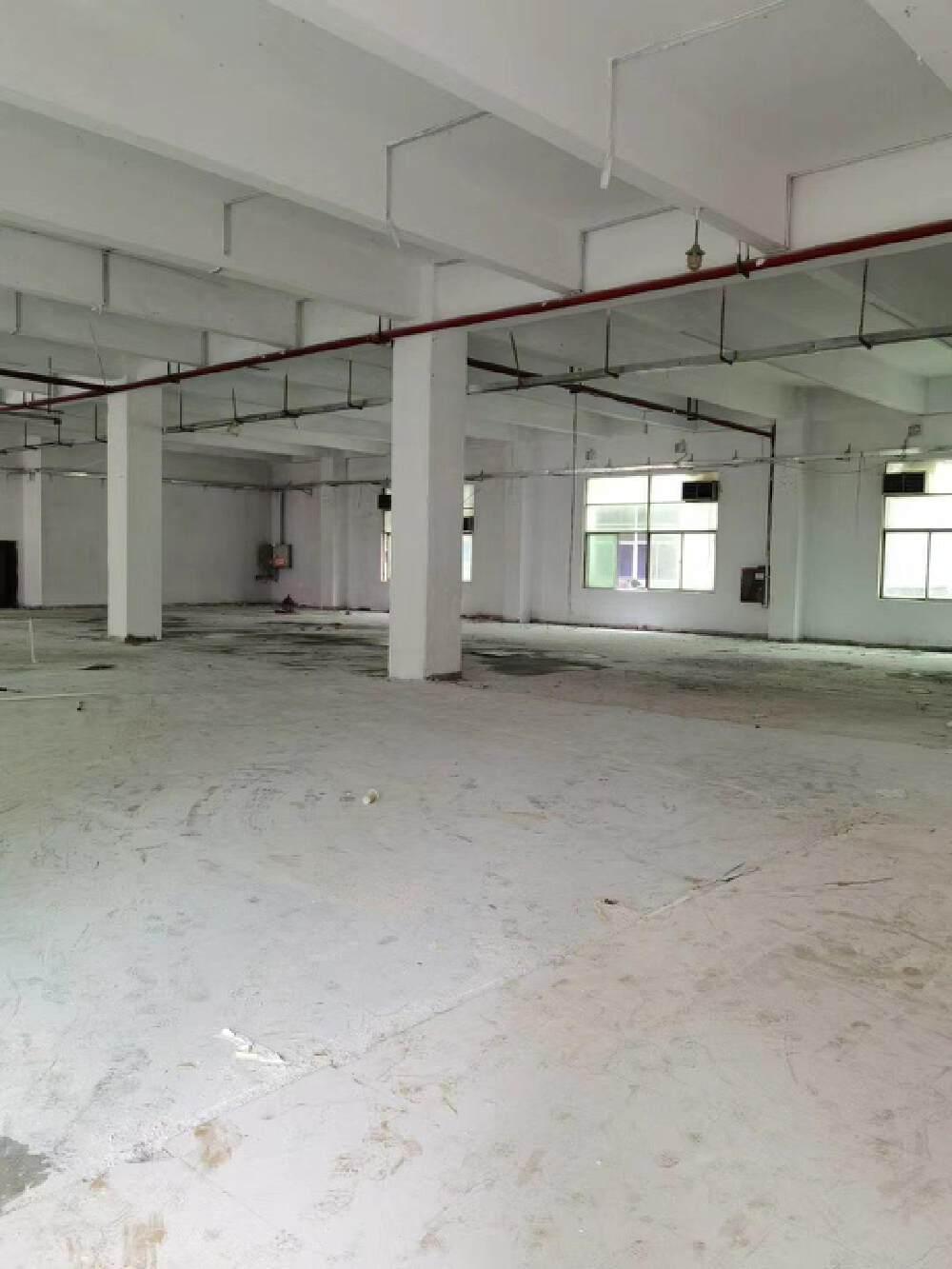 龙华上横朗原房东一楼1000平厂房仓库出租可分租,可办环评