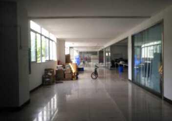 江门鹤山龙口镇原房东独门独院6700平米国有证标准厂房出售图片2