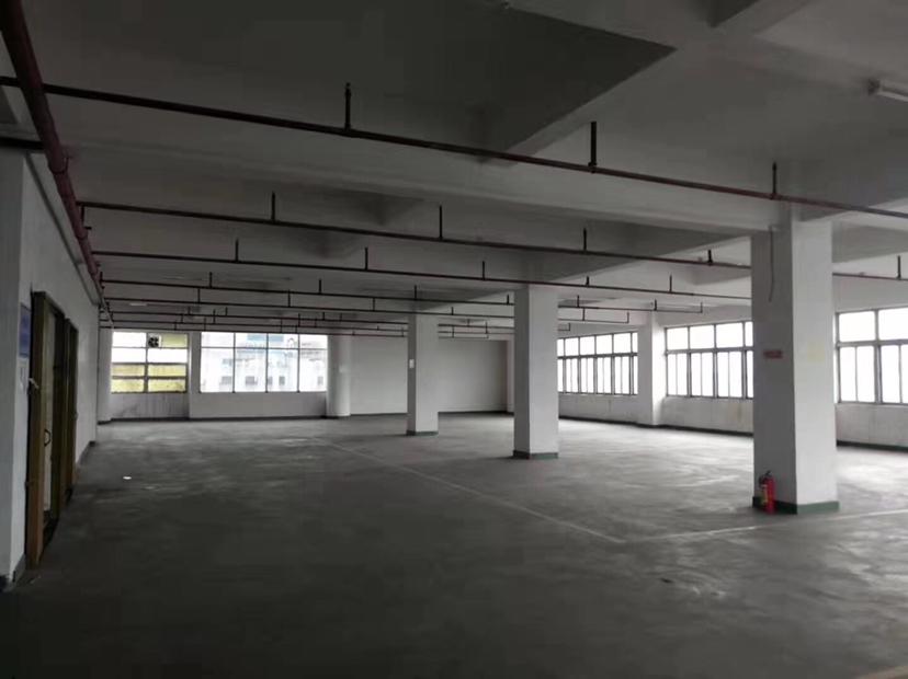 广州国有房产证标准厂房、11287.29方出售
