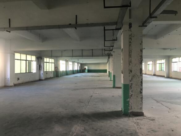 深圳市龙岗区同乐原房东超大空地工业区1600平形象好进车方便