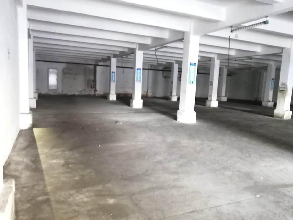 沙井万丰一楼1100平厂房出租可分租,适合仓库,机加工等行业