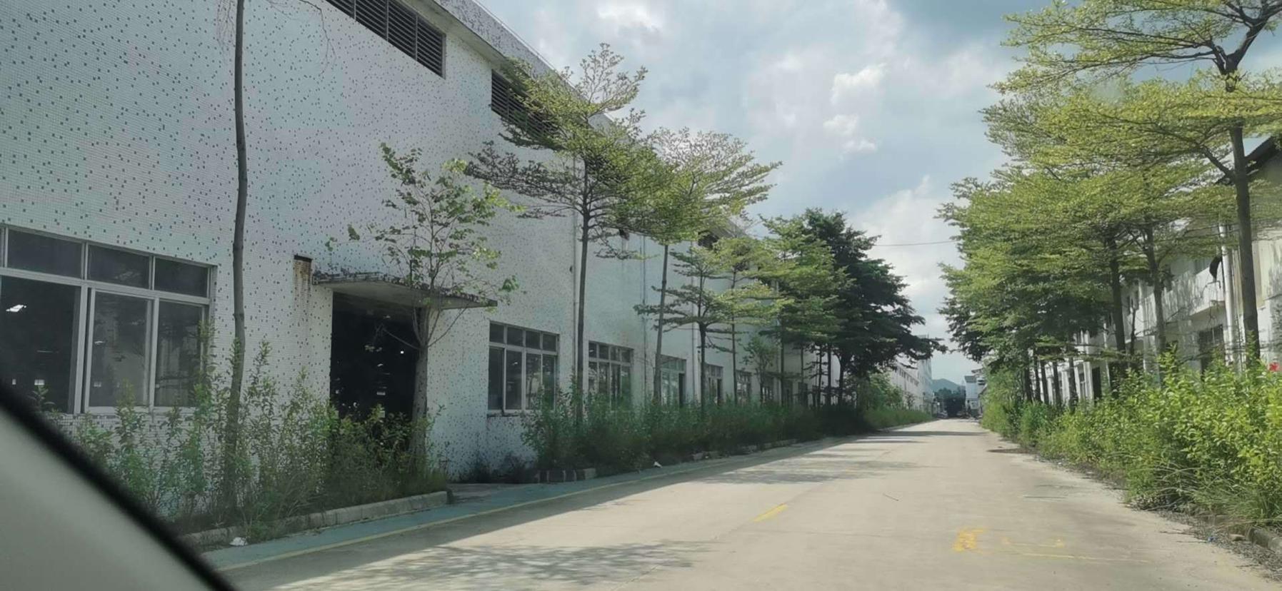 高标准单一层化工厂房出租,