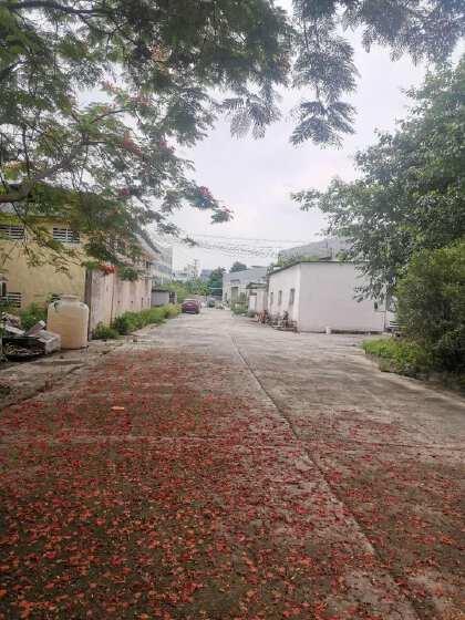 (可做食品厂)广州市白云区江高镇新出楼上铁皮厂房