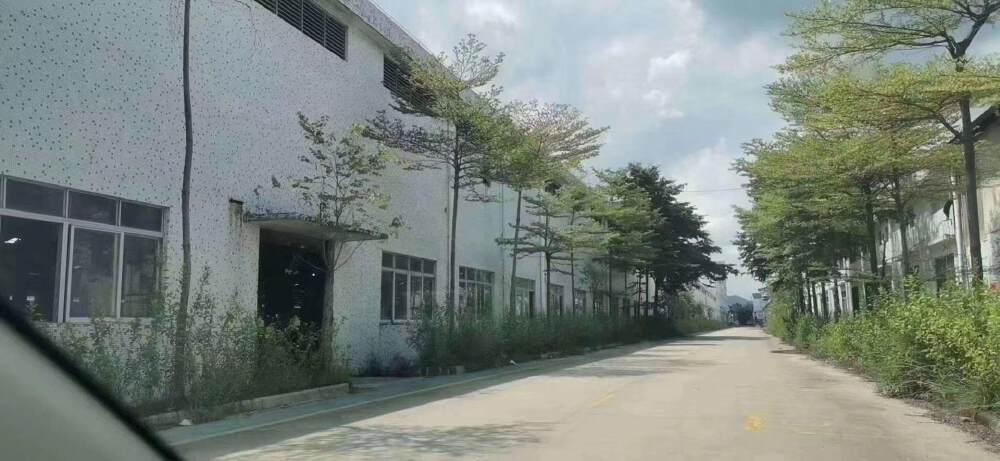 广州荔湾单一层砖墙到顶350000平方出租