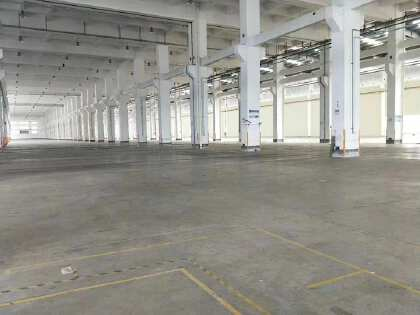 大湾区肇庆占地300亩建筑118086平方单一层红本厂房出售