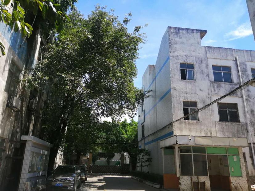 龙岗坪地楼上1180平高5米原房東独院红本厂房仓库出租精装修