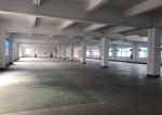 横岗新出楼上面积1250平报价22合同五年