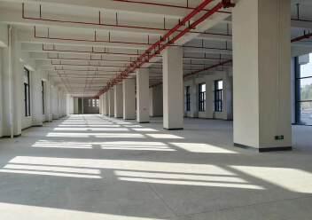 松岗燕罗原房东自建高新园区独栋标准厂房7500,带红本出租图片3