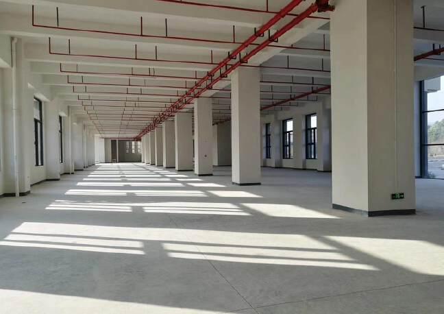 松岗燕罗原房东自建高新园区独栋标准厂房7500,带红本出租