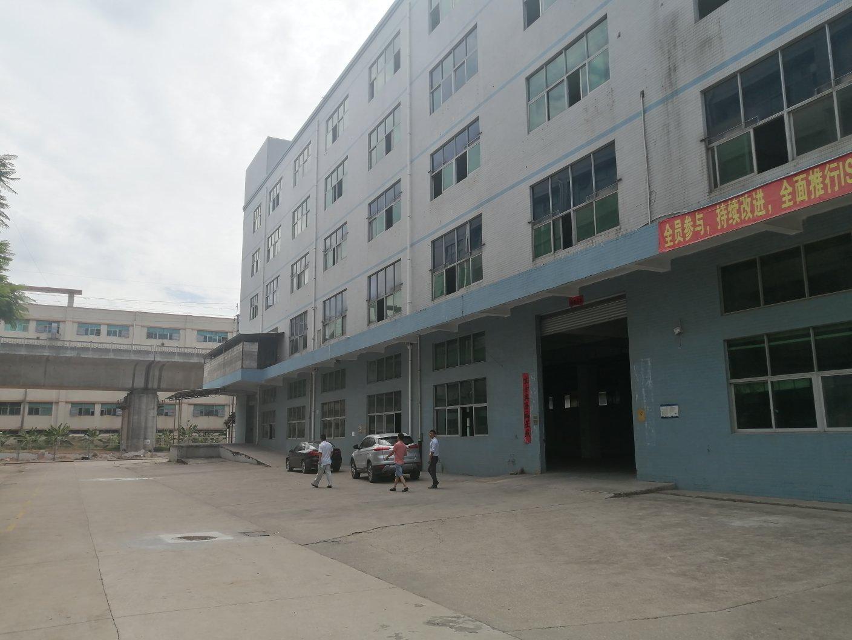 平湖华南城附近1000平厂房出租可分租可做电商仓库