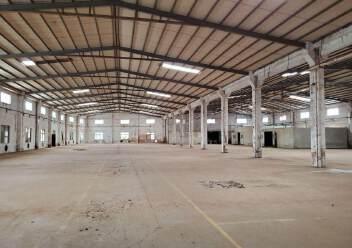 新会区崖门镇独院单层一楼厂房适合五金机械医疗设备等高新企业图片5