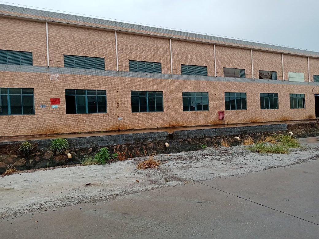 新会区单层一楼厂房出租有空地仓库也可