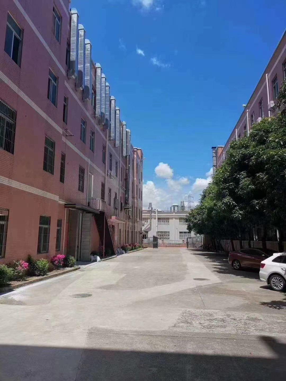 新出原房东独院标准红本厂房高大上档次价格美丽