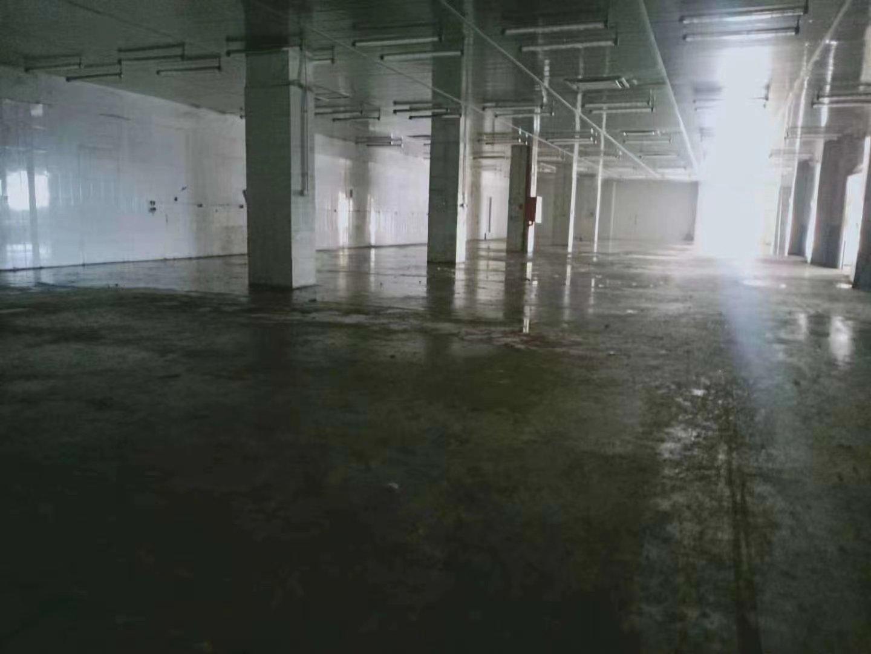 平湖海吉星白泥坑大门附近一楼现成冻库厂房仓库招租