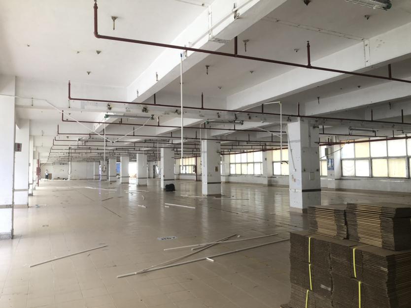 深圳市龙岗区原房东工业区标准厂房出租1920平形象好超大空地