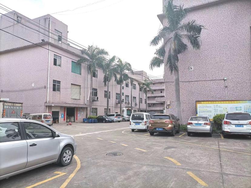 龙岗龙东一楼550平有红本厂房招租可办环评,适合五金仓库。