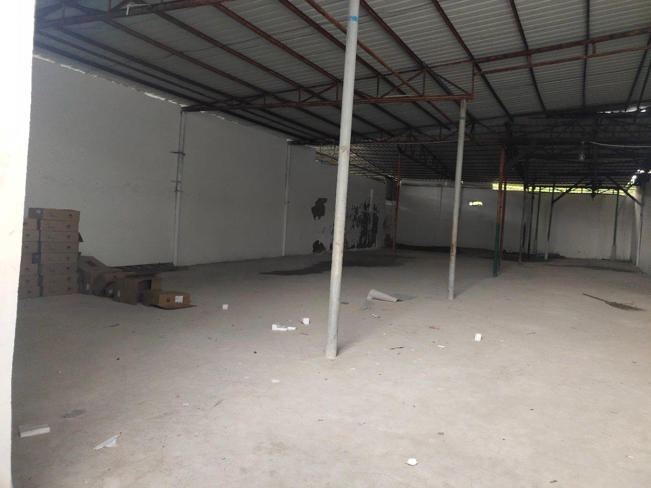 新出独栋钢构厂房仓库500平。