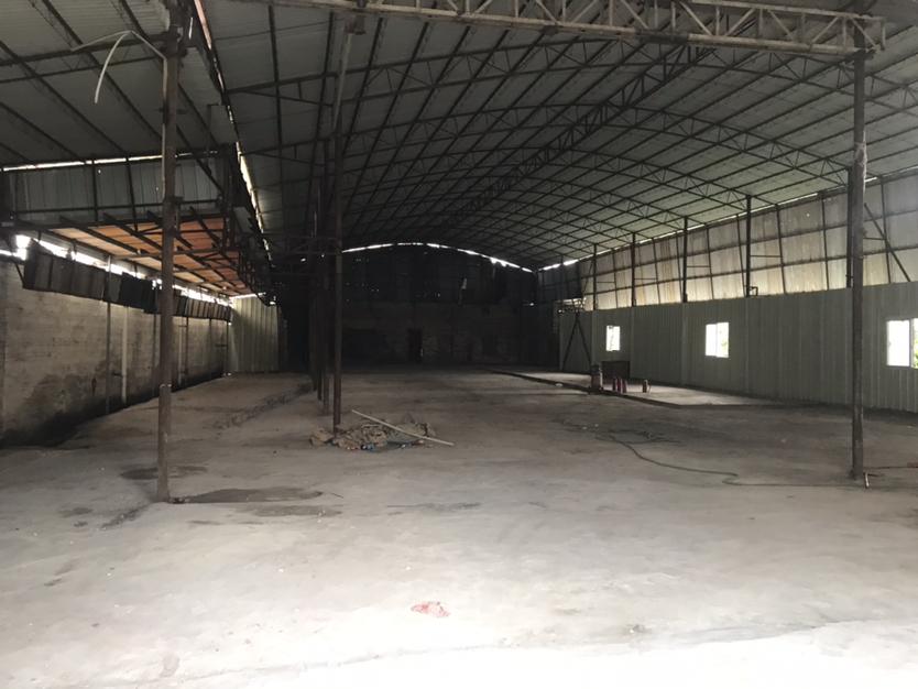 独栋1000平方,可以作软包,加工,仓库等