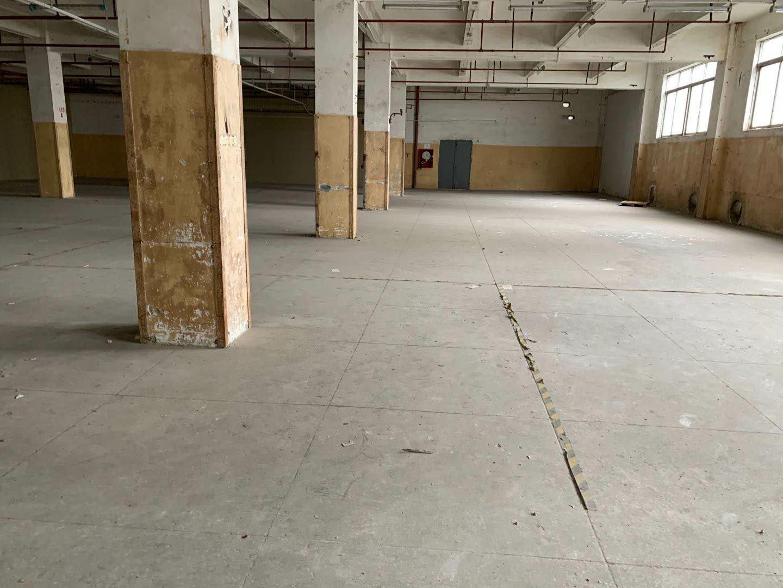 龙华清湖大和路珠三角高速路口原房东15000平米物流仓库出租