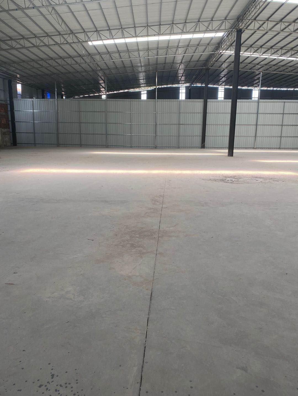 狮山镇兴业路新出方正实用钢构厂房房东直租可做物流仓库小型加工