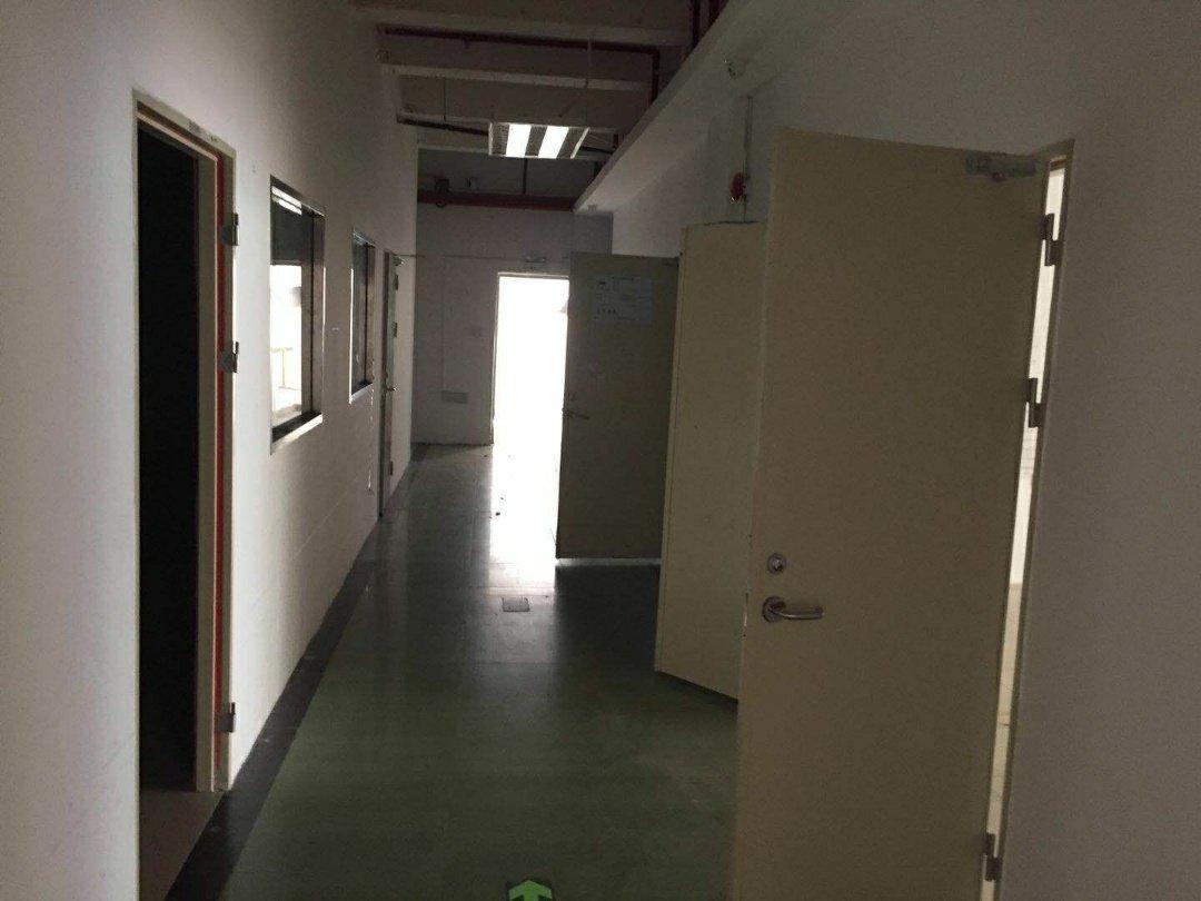 蛇口南油可做服装仓库,展厅的一手使用率