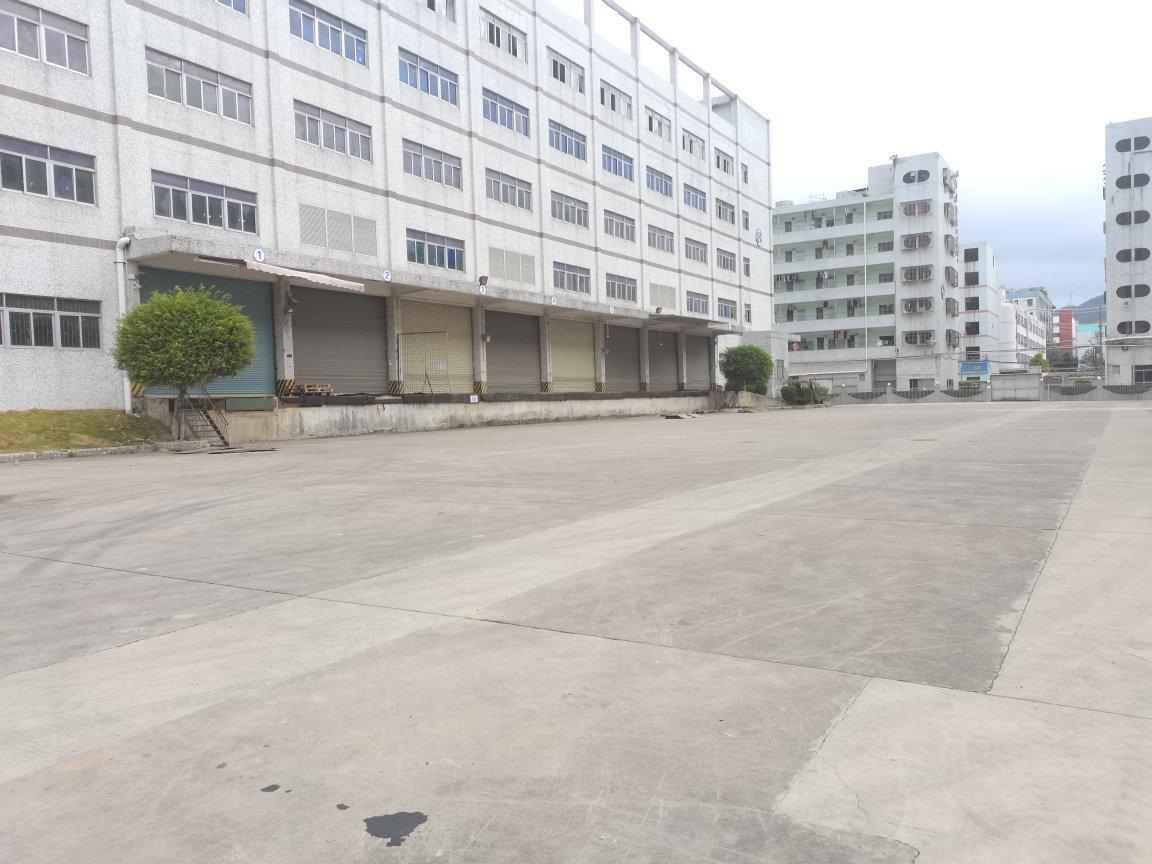 福永原房东30000平有卸货平台厂房仓库出租可分租