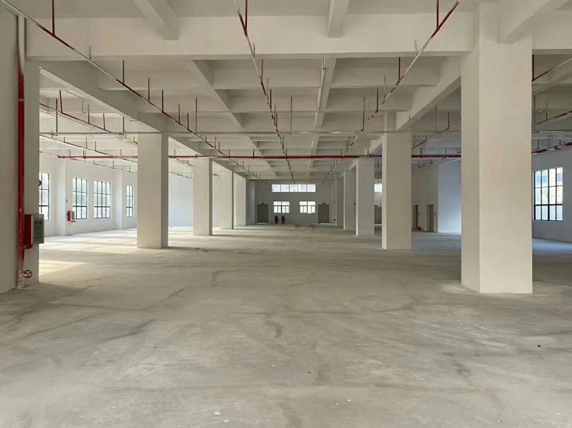 惠州三栋原房东大量厂房仓库出租