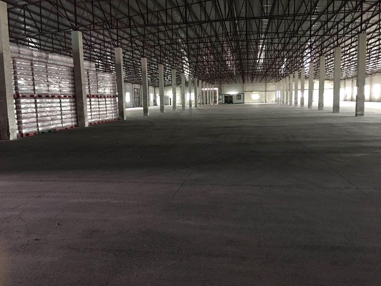 南山西丽7000平方原房东钢构仓库物流厂房出租