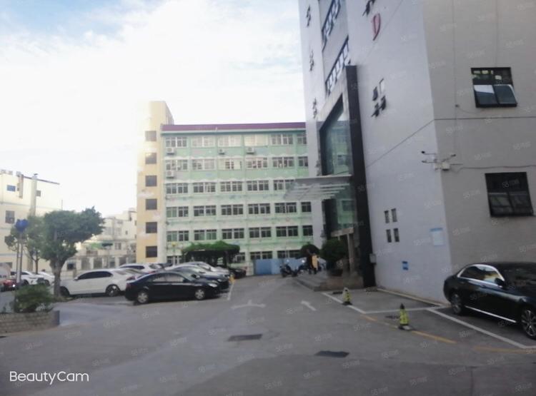龙华油松东环一路边上精装修一楼600平办公厂房仓库出租