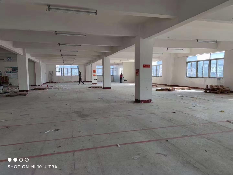 宝山电商低价租: 楼上新出带装修800平仓库加办公室