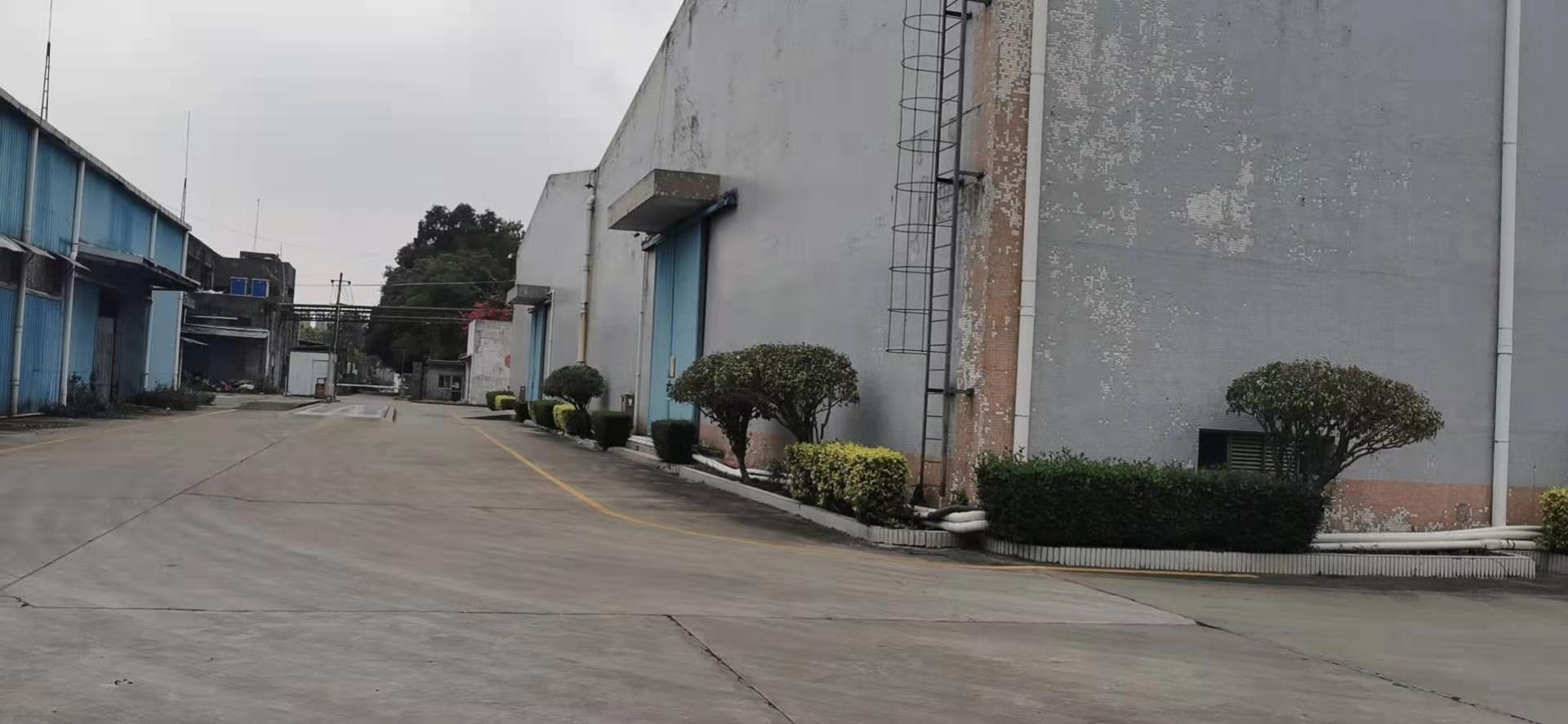 石岩松白路边高速口1500平方一楼仓库厂房出租