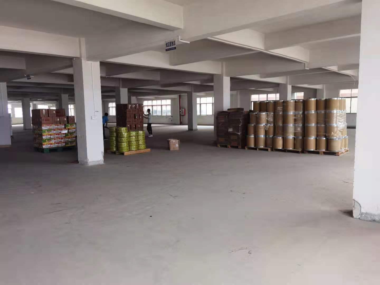 华南城新出工业园区一楼标准厂房可做仓库可分租