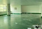 金桔石大路边新出楼上精装修480平方