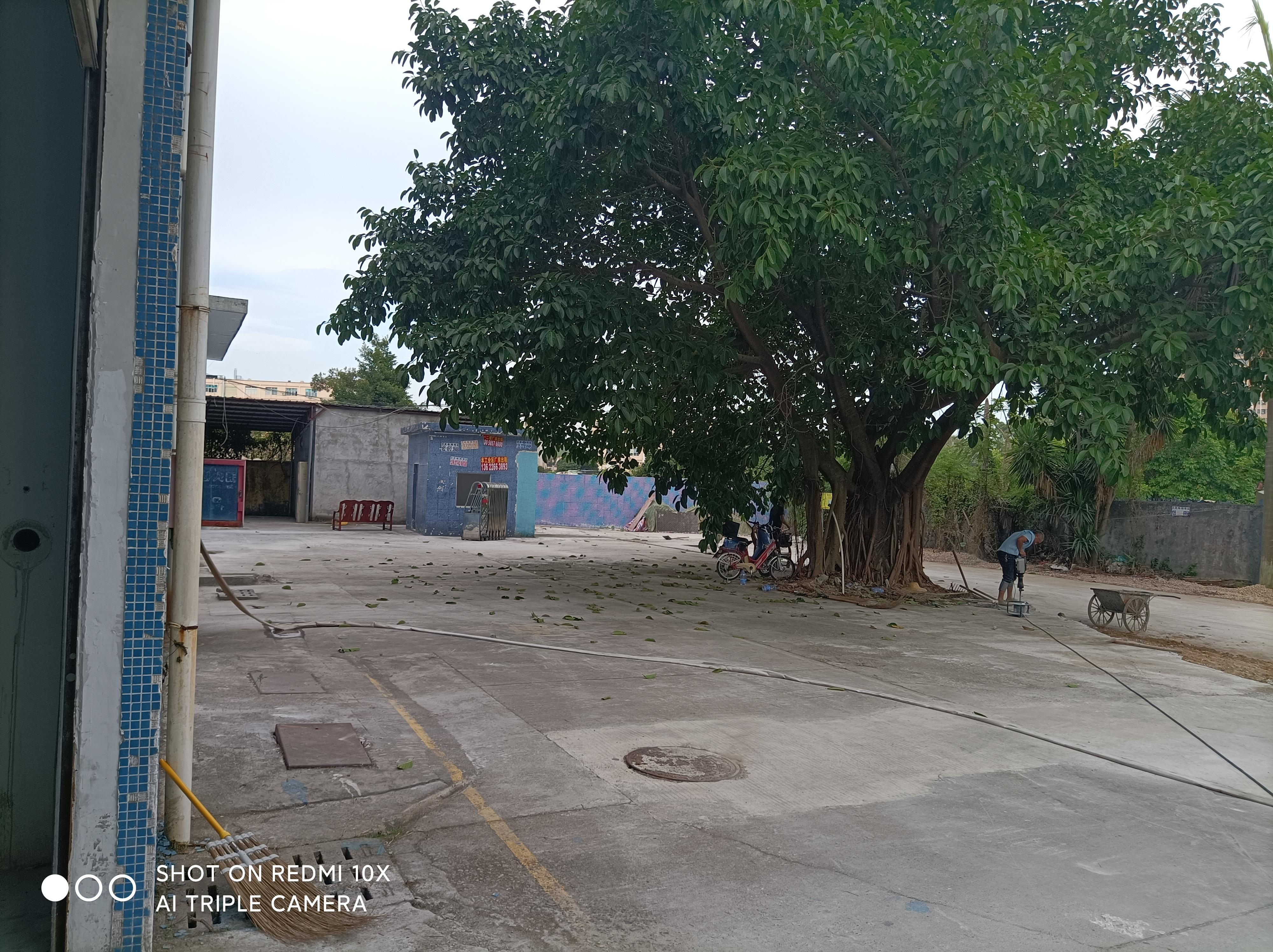 福城村委独院3600平方厂房仓库出租
