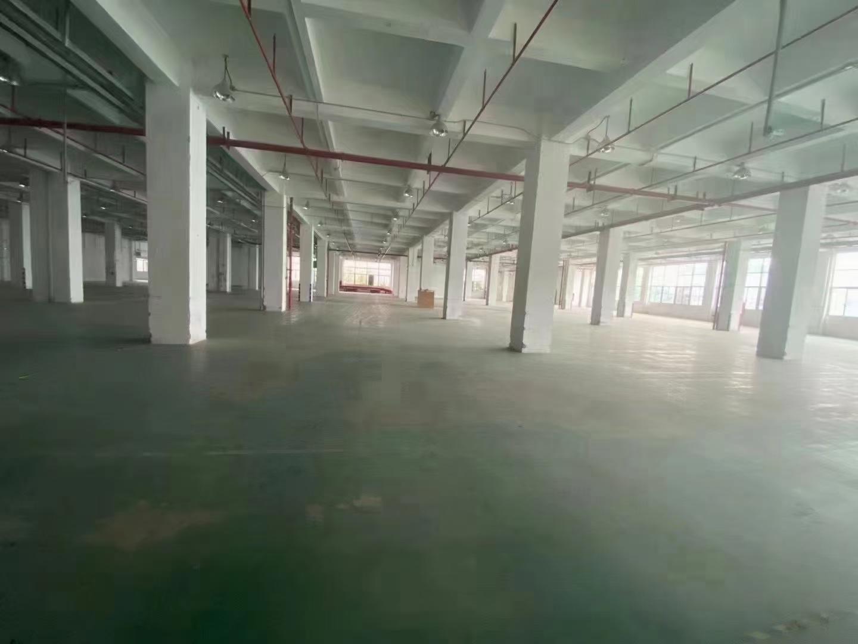 深圳市龙华新区新出物流仓库10000平,带卸货平台,超大空地