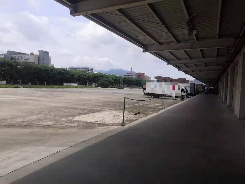 深圳市龙岗区横岗单一层钢构物流仓库20000平方米招租