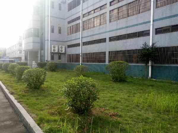 各位深圳东莞的老板门塘厦镇新出一楼致三楼每层1250可分租