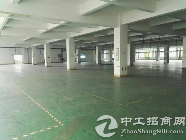 万江筒沙洲10000大型工业园招租(可分租)