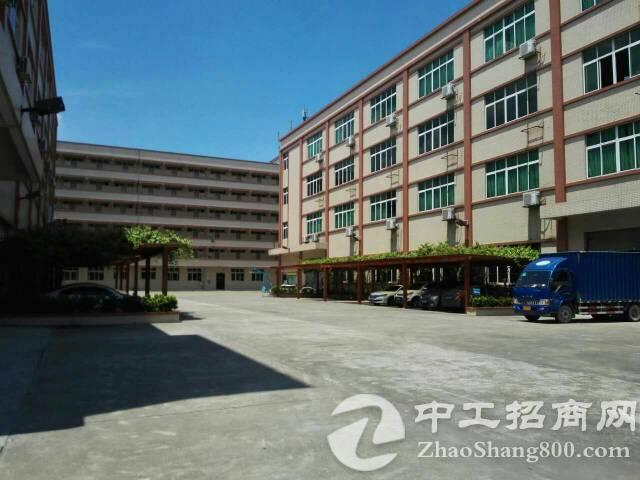 万江新出厂房出租楼上1200平方,有电梯,价格便宜