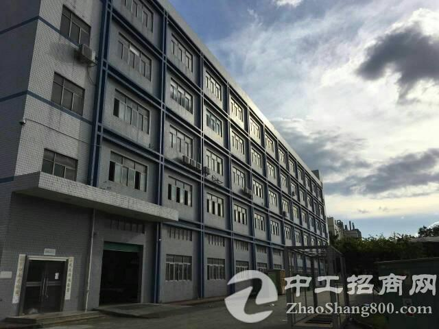 西乡鹤洲厂房1700平方精装修无转让费