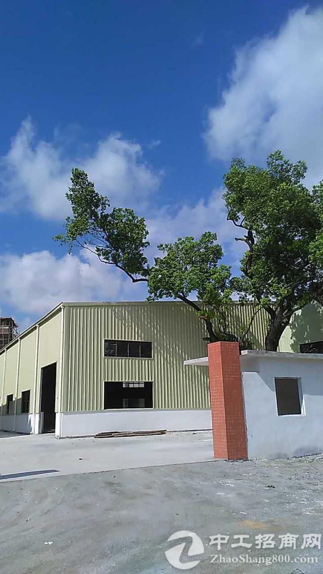 小独院铁皮1300宿舍加办公室700空地300有百年樟木飘香,门前水塘