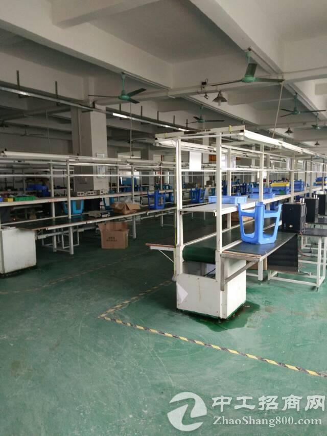 福永和平新出厂房2600平米带豪华装修-图2