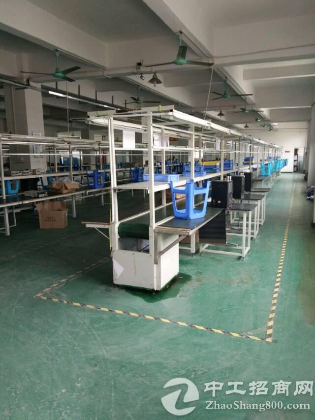 福永和平新出厂房2600平米带豪华装修-图4