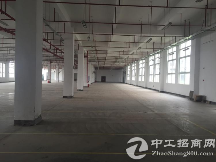 出租北碚同兴1200平米厂房