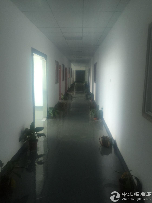 西乡固戍楼上980平方厂房出租