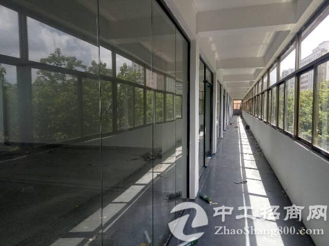 全新玻璃外墙,玻璃隔门精装办公全面开始招租