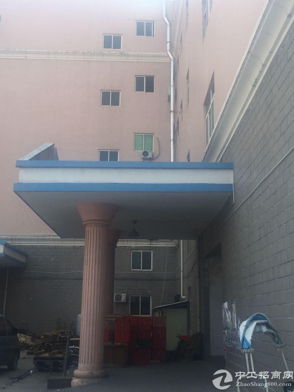 西乡黄麻布一楼2000平方厂房出租