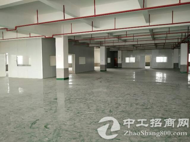 黄江镇东环路标准厂房出租